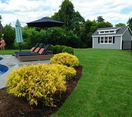 Landscape - Saratoga Sod