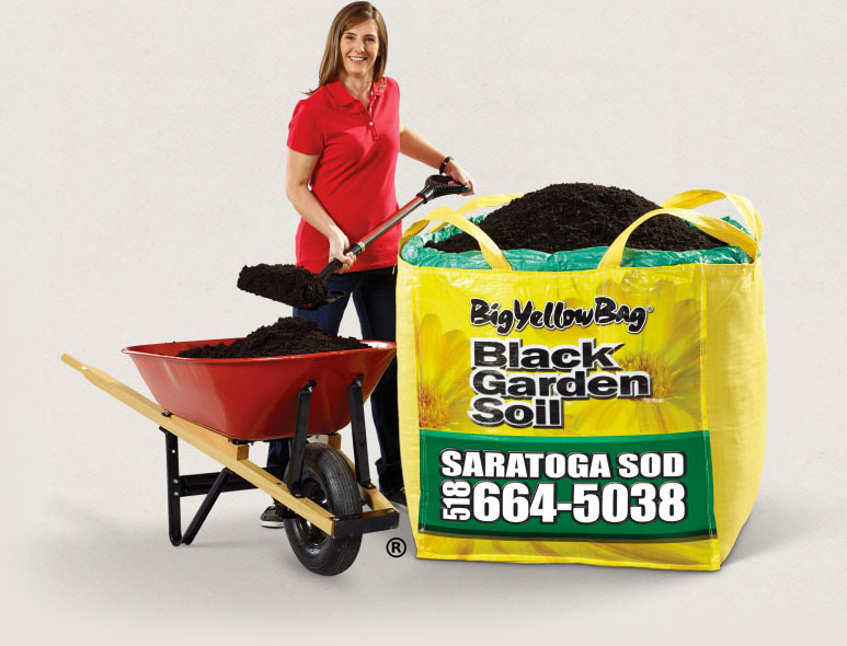 Big Yellow Bag Garden Soil