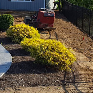 DIY Sod Installation Guide