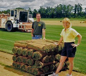 Saratoga sod employees by pallet of sod