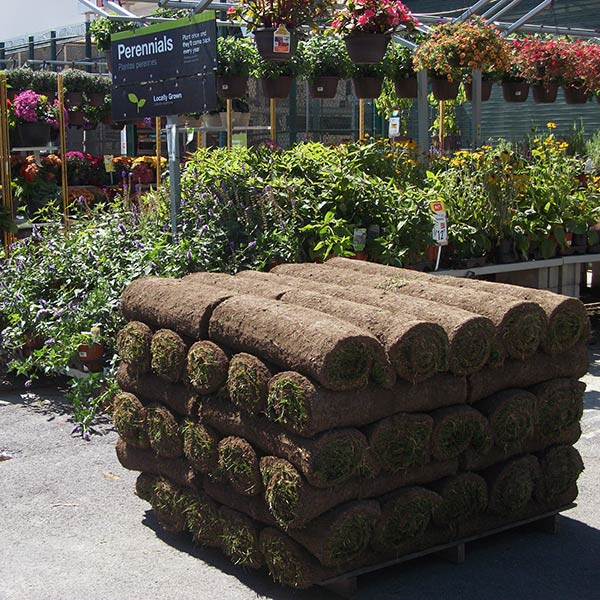 We serve garden centers - Saratoga Sod