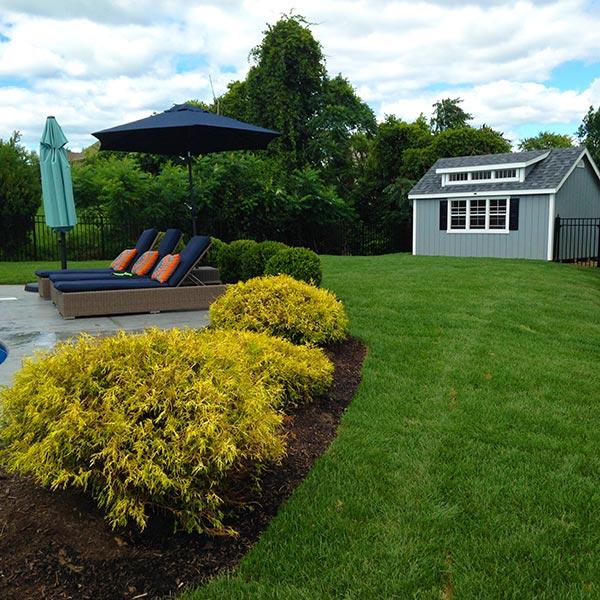 Backyard after sod turf grass installation