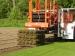 harvesting-small-rolls
