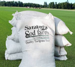 Bags of Saratoga Sod Turfgrass Seed